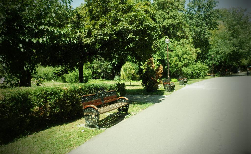 Herăstrău Park is one of the many reasons to visit Bucharest!