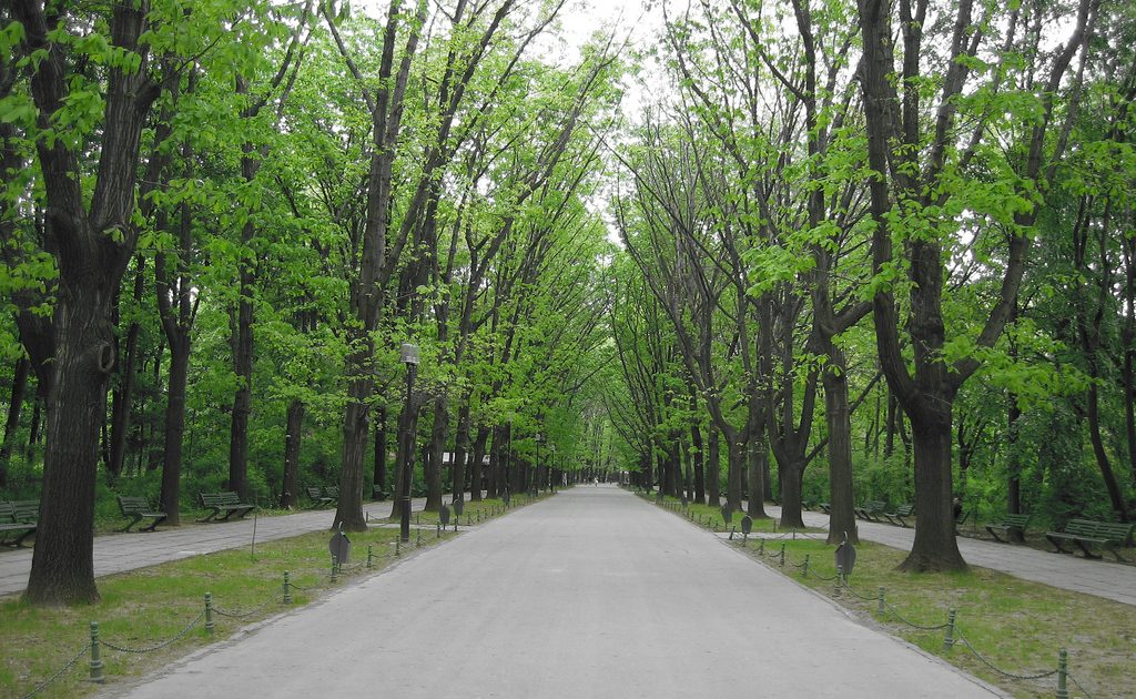 Seeing Herastrau Park on a bike tour in Bucharest is the way to go!