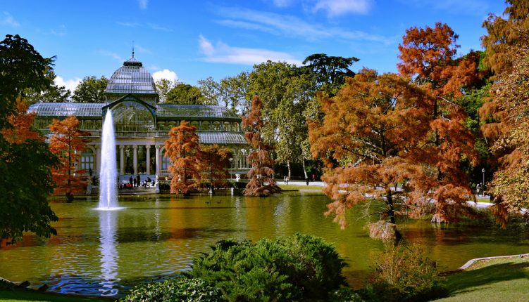 6 Reasons Why Autumn in Madrid is the Best Time to Visit