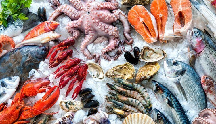 Best seafood restaurants in Cascais